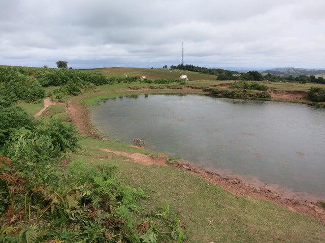 Pond on Garway Hill