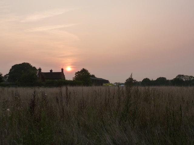 Sunset near Little Bramshot Farm