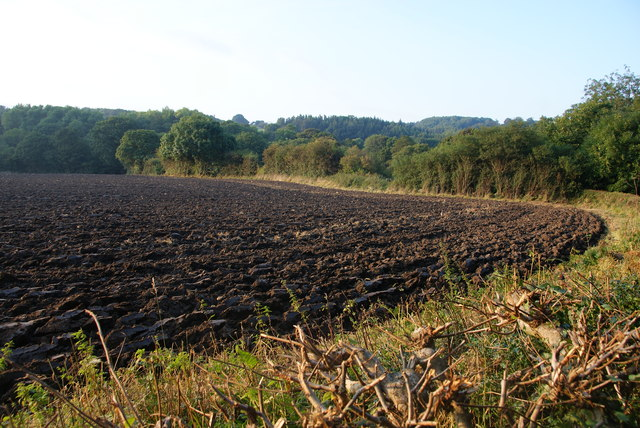 The edge of a ploughed field near Egton Bridge