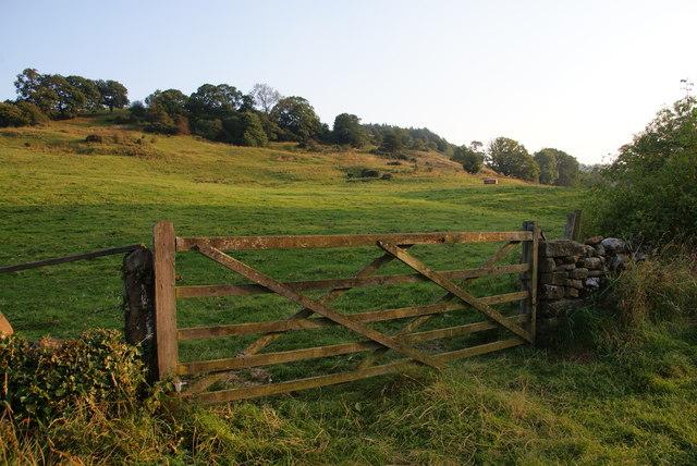 Field near Egton Bridge