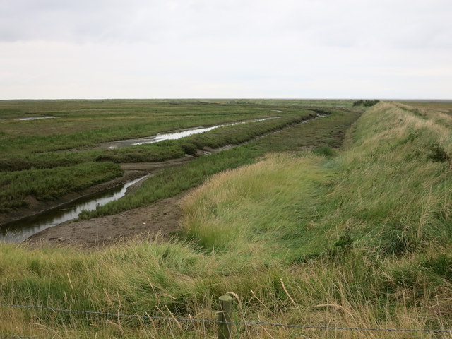 New saltmarsh at Freiston Shore