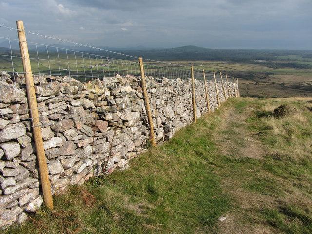 Wall and path near Tre'r Ceiri
