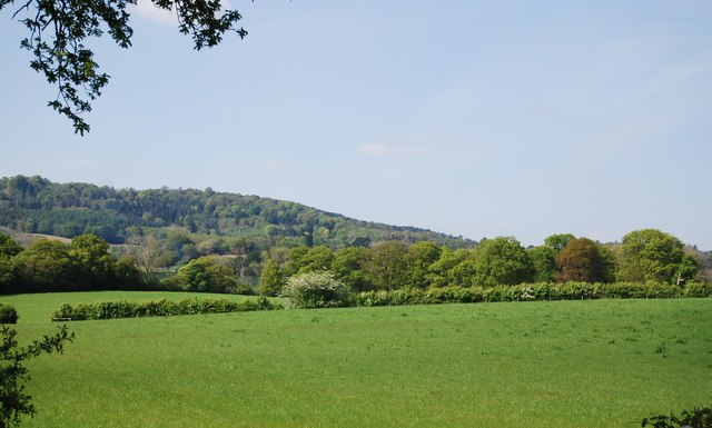 Countryside near Ockley