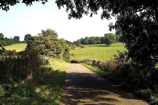 Lane towards Sheen