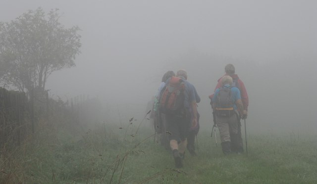 Walkers in the mist