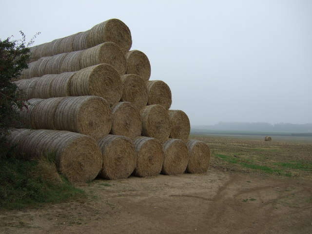 Bales and field, Thornholme Field