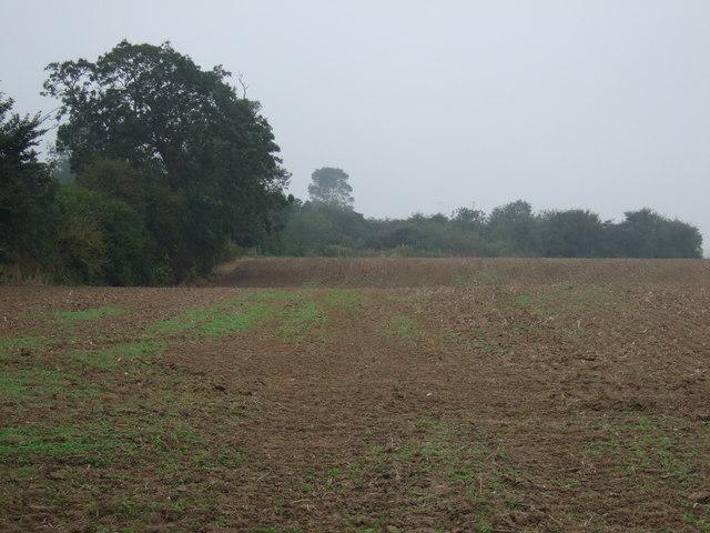 Farmland near East End Farm, Thornholme