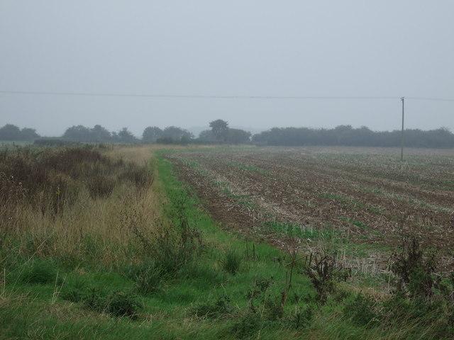 Farmland, Dunning Crofts