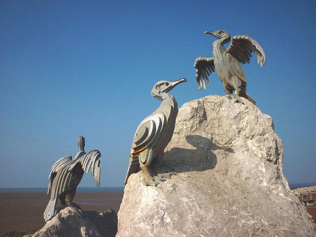Cormorants close up, Stone Jetty, Morecambe