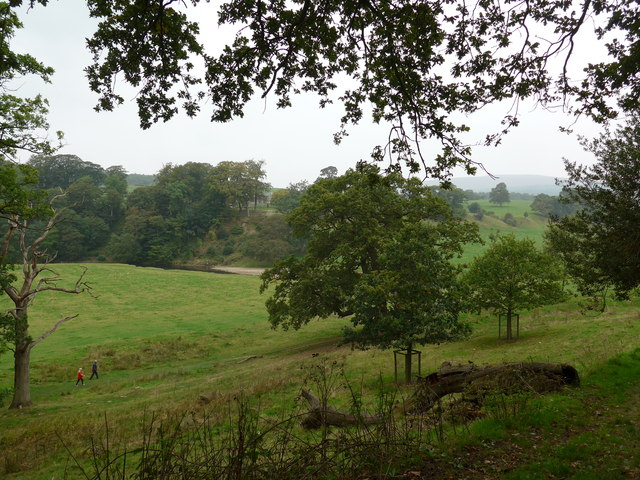 Dales Way trek from Bolton Abbey to Pinder Stile (4)