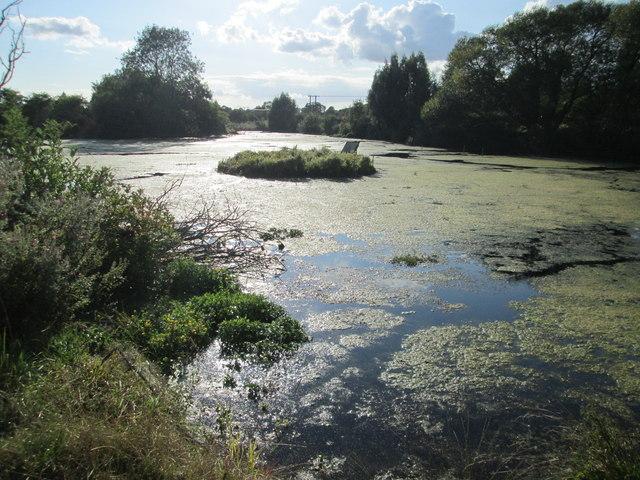 Island on Wilton Water