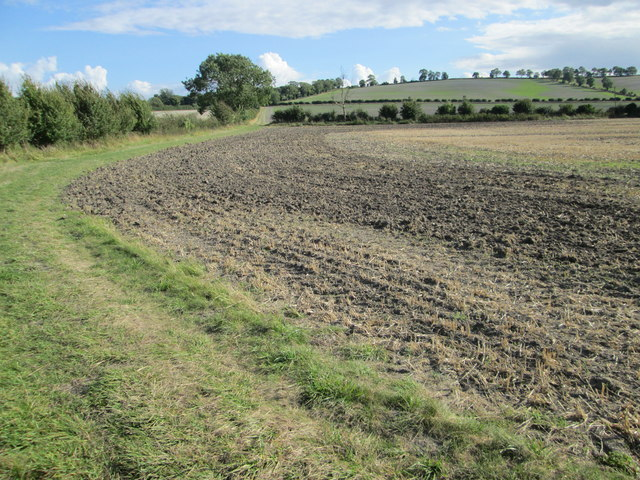 Ploughed field near to Wexcombe in WIltshire