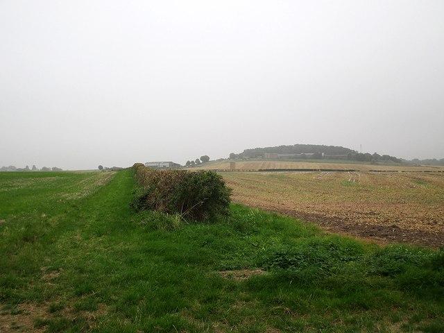 Bridleway to Tollerton