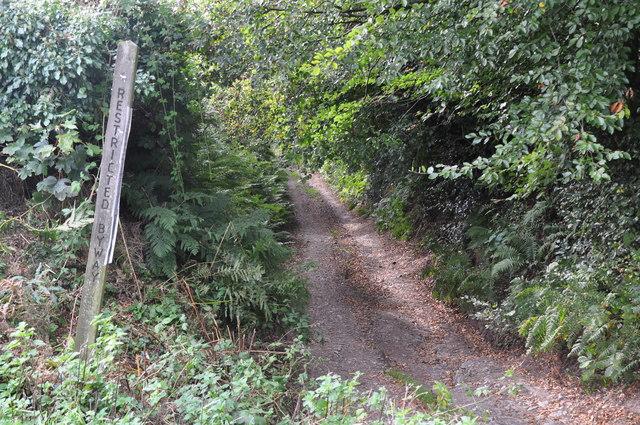 West Somerset : Bridleway