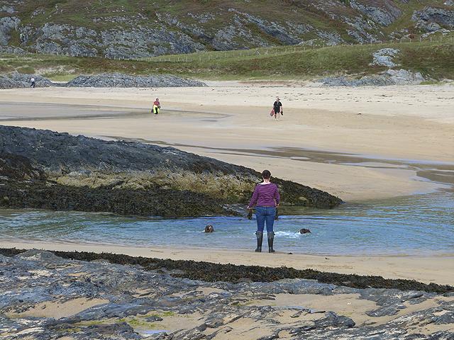 Swimming the dogs on Tràigh Bàn