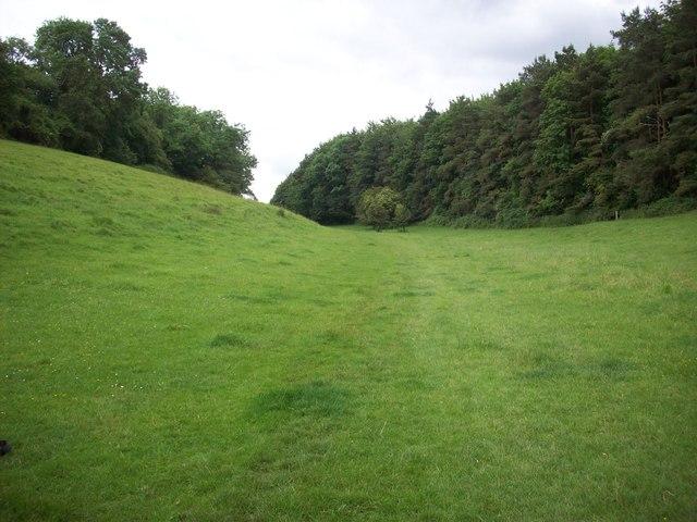 Dean Bottom, near Widford, Oxfordshire