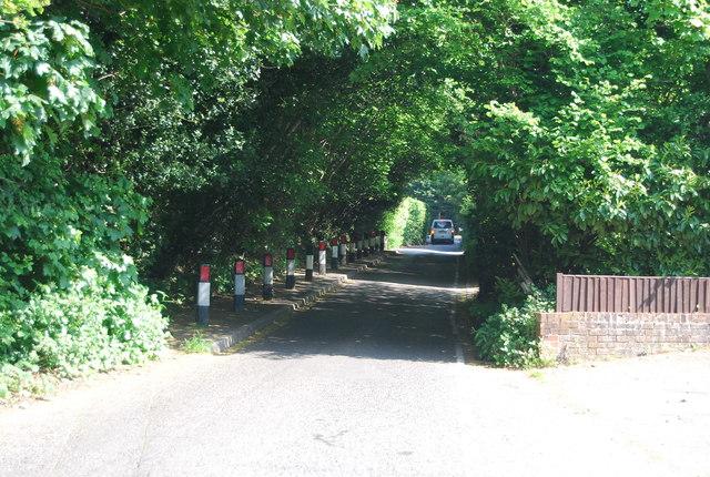 Single track, Cornford Lane