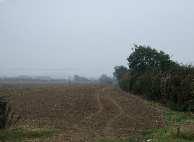 Farmland and hedgerow near Haisthorpe