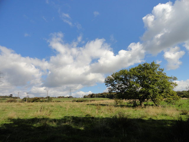 View across to Greencroft Park