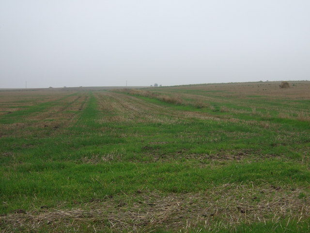 Stubble field, Hunger Hills