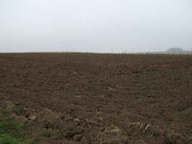 Ploughed field west of Carnaby