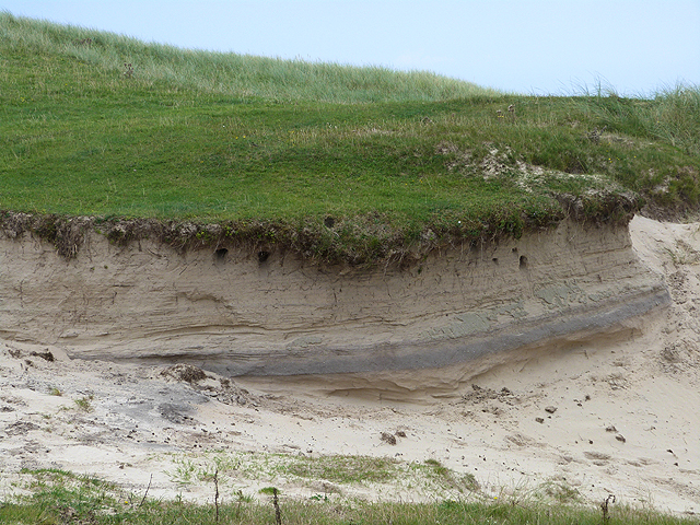 Sand martin burrows on the Ardnave peninsula