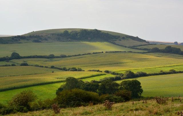 Farmland, East Chaldon, Dorset