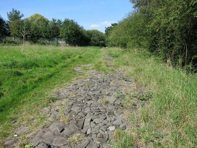 Strange Surface on the Path