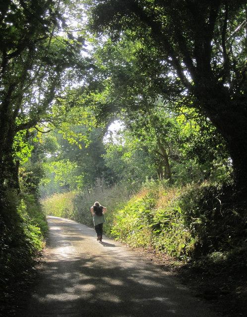 Lane from Kilminorth