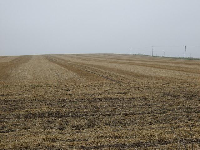 Stubble field, Gain Hills