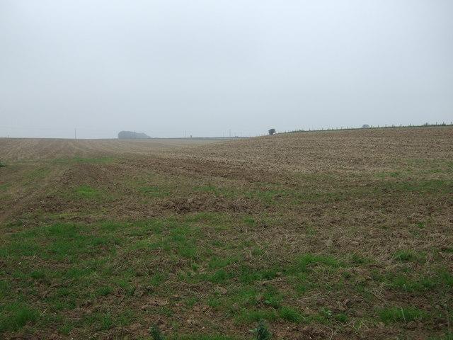 Farmland west off Carnaby