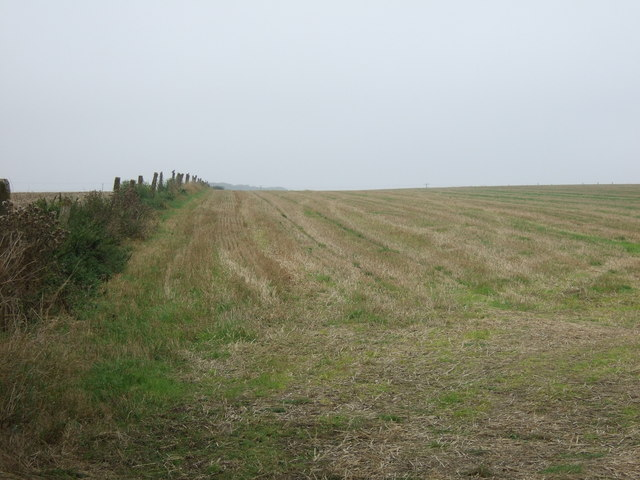 Stubble field north of the A614