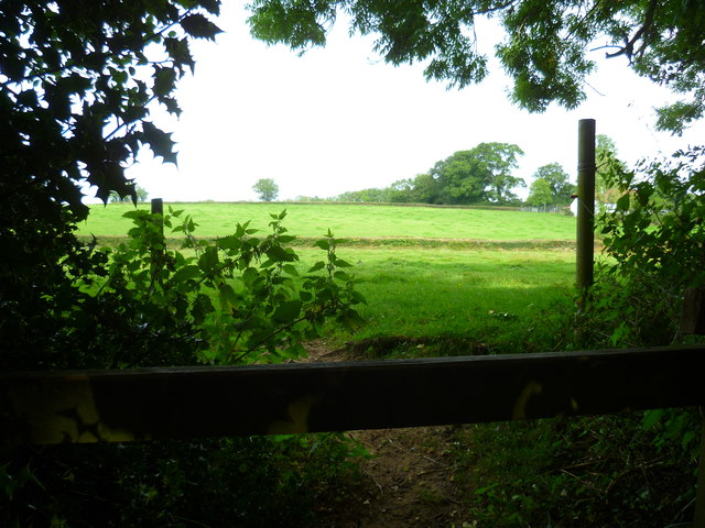 Footpath going north from Bishopswood