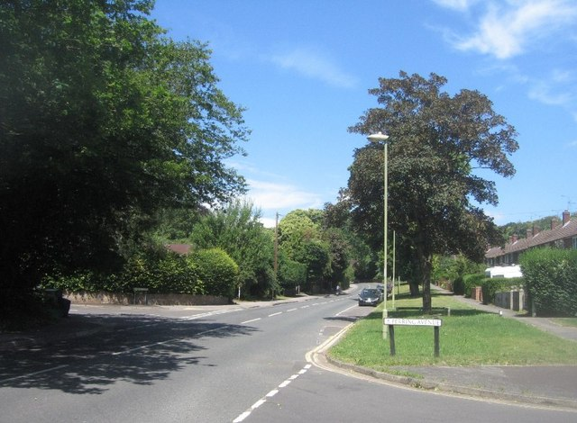 Perring Avenue / Fernhill Road