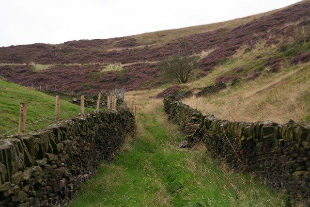 Walled track and public path to Binn Edge