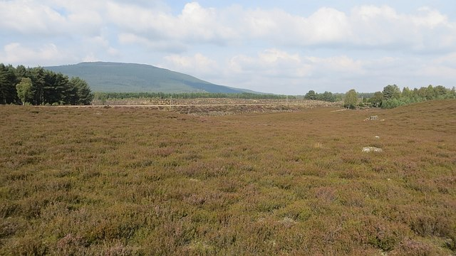 Moorland north of Aviemore