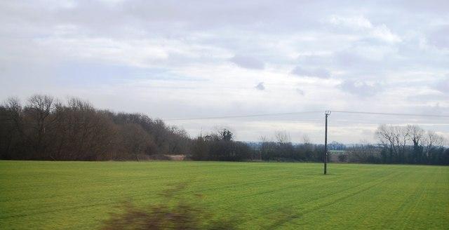 Farmland, Foxton