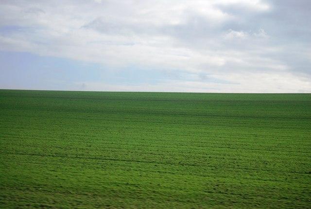 Farmland, Rowley's Hill
