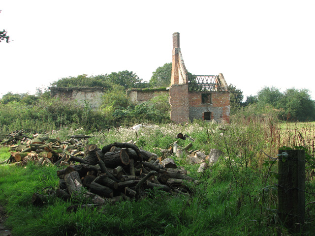 Logs stored beside farm track