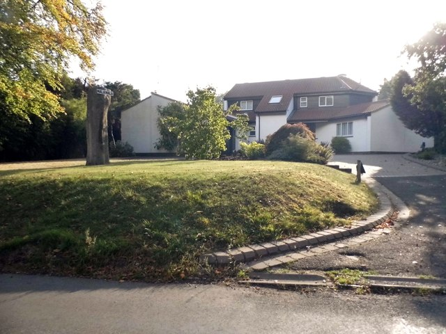 Mala Mala on Burtons Lane