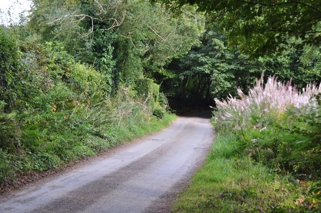 West Somerset : Old Way