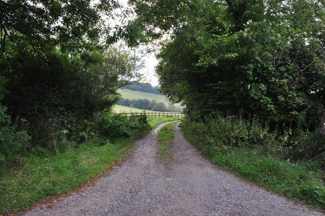 West Somerset : Farm Track
