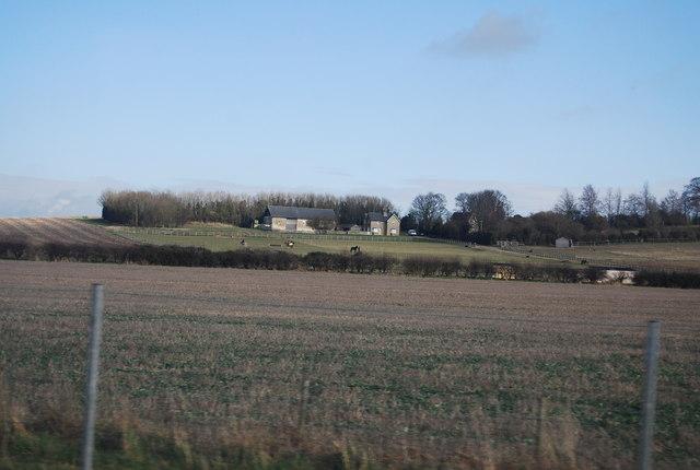 White Hill Farm