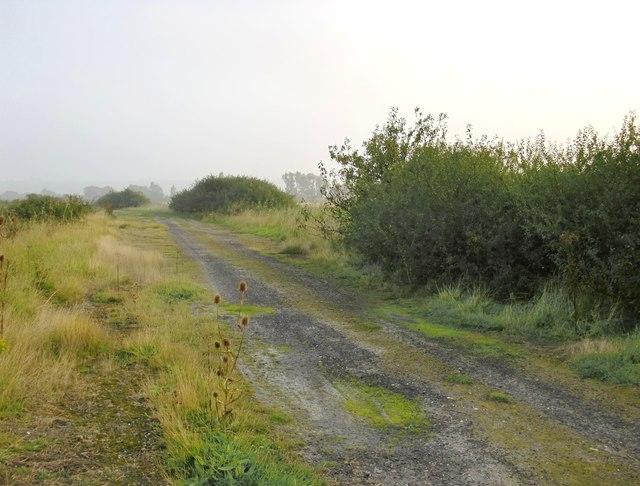 Mist along the landway