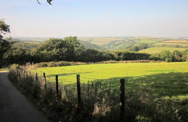 Lane and field, Kilminorth Barton Farm