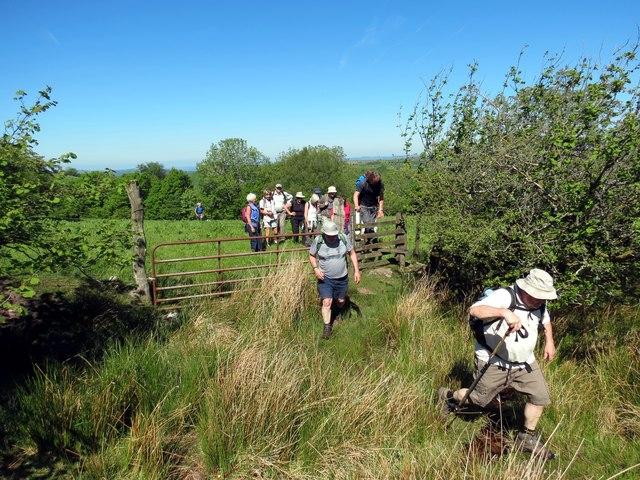 Llwybr Mount Pleasant Path