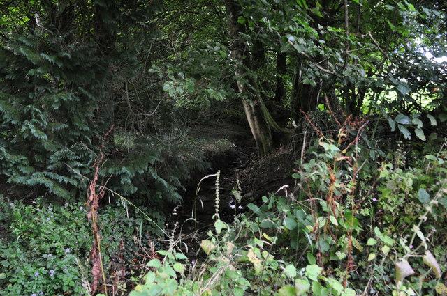 West Somerset : East Hayes Plantation