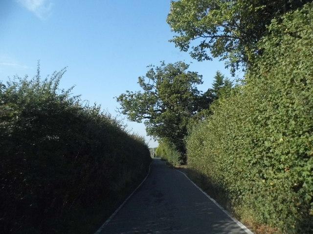 Springwell Lane, Hill End