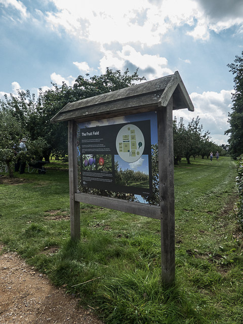 Fruit Field, Royal Horticultural Society Garden, Wisley, Surrey