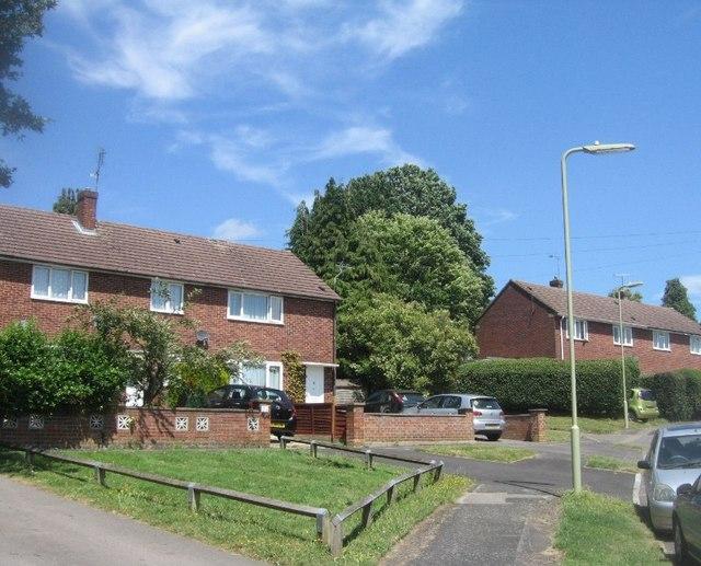 Houses in Field Road